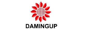 Damingup International Limited